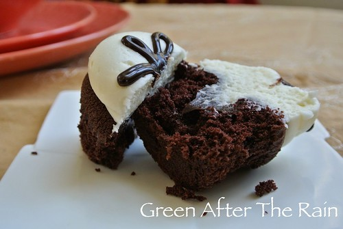 1501 Georgetown Cupcakes at Home _0520