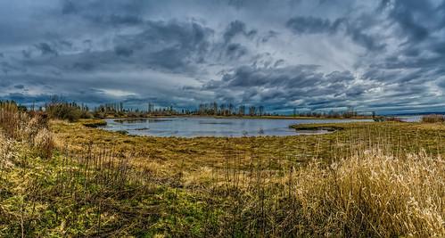 winter panorama canada clouds landscape britishcolumbia pano surrey textures crescentbeach grasses winterwalk lightroom photoshopelements martinsmith tidallagoon nikond7000 topazclarity 7imagepanorama ©martinsmith nikkor1855mmf3556gvrii