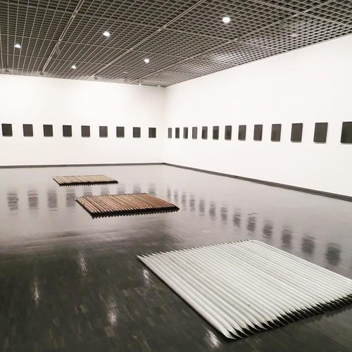 種と、水と、空気を分ける。 #近代美術館