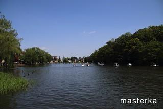石神井公園の池3
