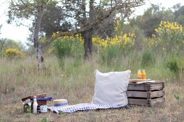 Desayuno al aire libre 1