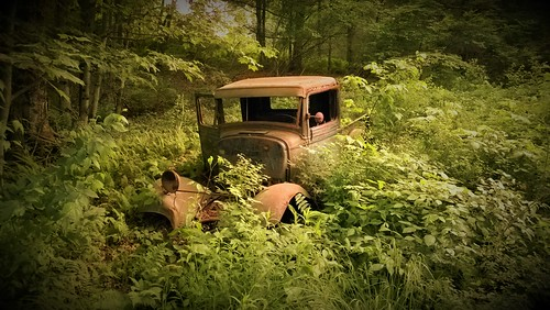 usa abandoned nature car forest