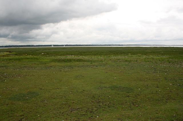 Marshes near Fawley
