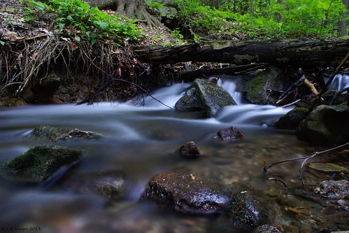 reading stream pa a77 tamron18200 sonyalpha noldestateforest punchesrun