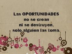las_oportunidades