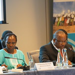 RBM Board pushes to accelerate anti-malaria fight to meet the MDGs