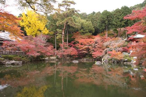 【写真】2012 紅葉 : 醍醐寺/2020-08-07/IMGP6867