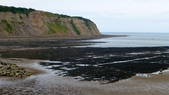 Whitby (103)