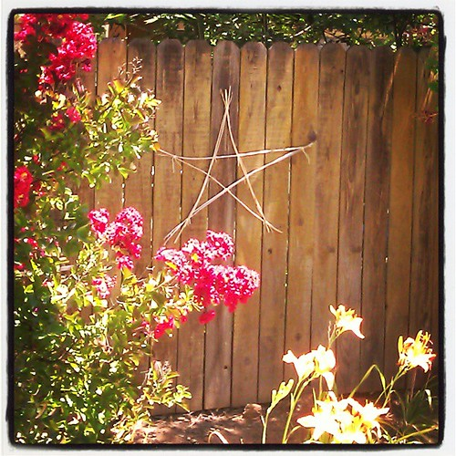 My son made this pretty star for me out of spent, dry daylily flower stalks. I love it!