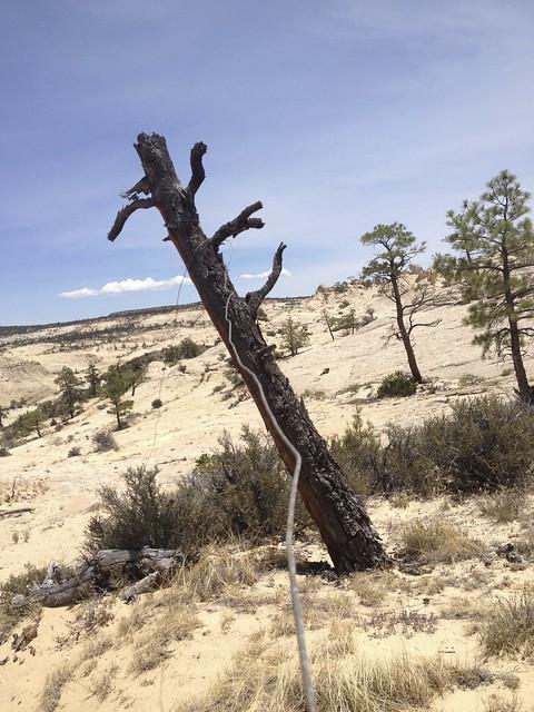 Boulder mail trail