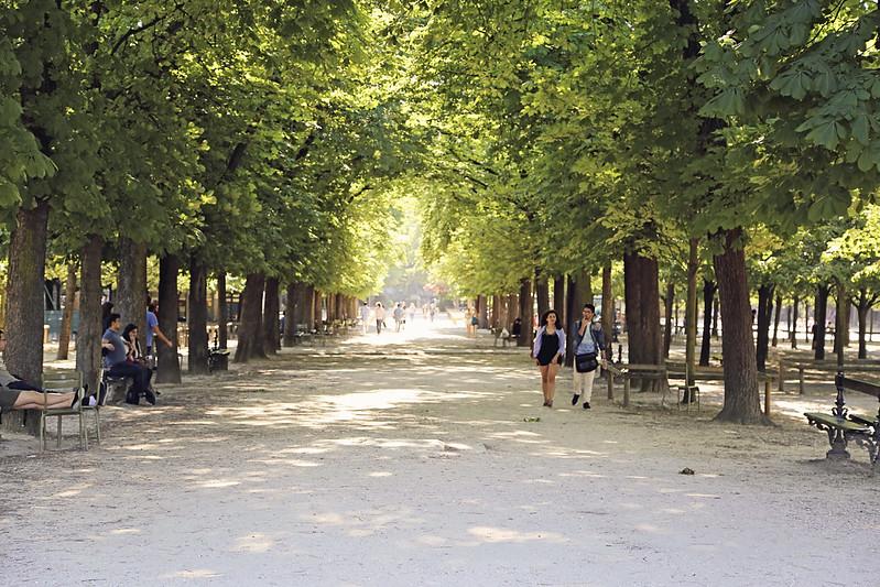Strolling in le Jardin du Luxembourg