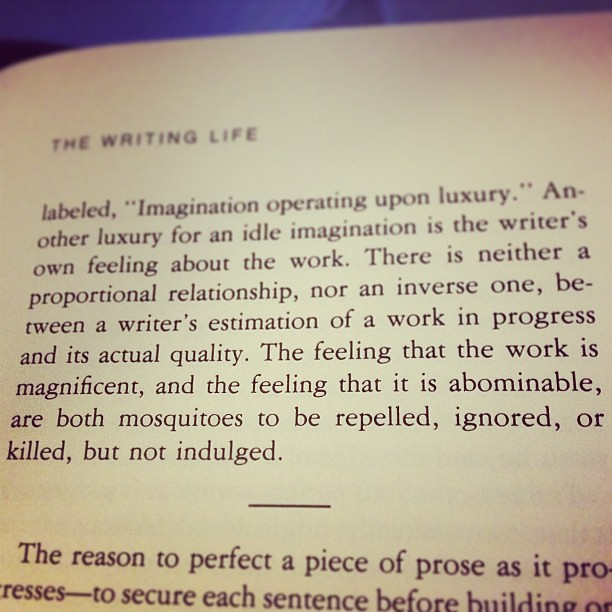 """The feeling that the work is magnificent, and the feeling that it is abominable, are both mosquitos to be repelled, ignored, or killed, but not indulged."" Annie Dillard says so. (True of any work, I think)"