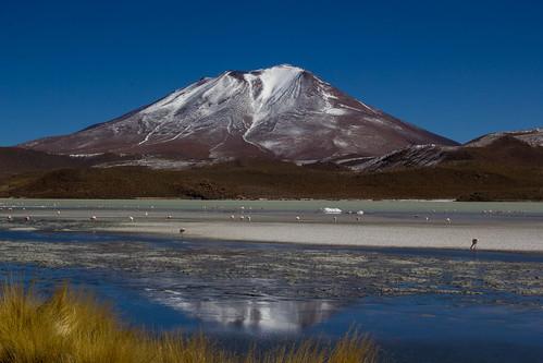voyage travel wild mountain lake bird nature water montagne flamingo lac bolivia bolivie flickrestrellas ringexcellence dblringexcellence