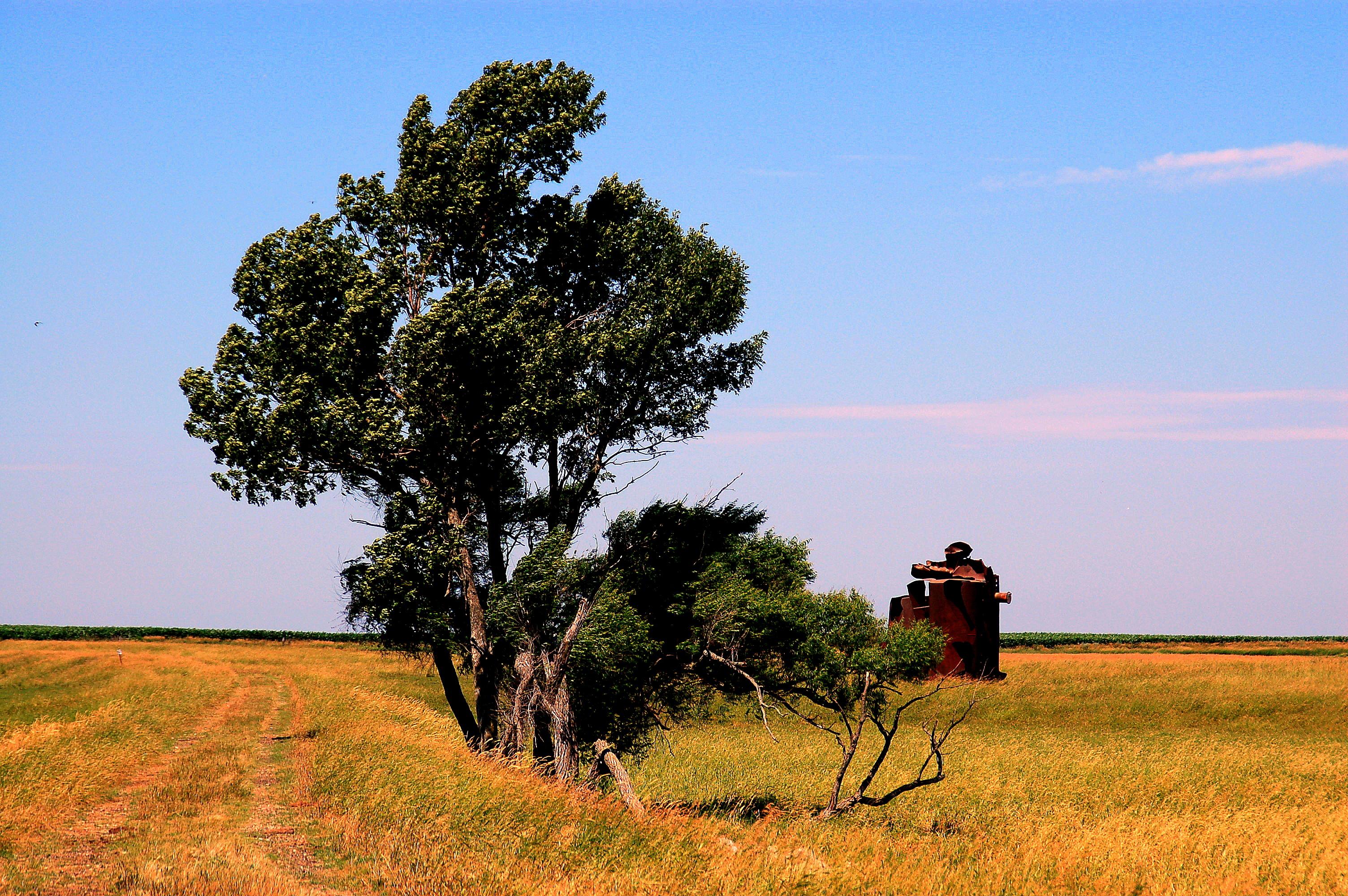 South dakota spink county doland - Clarksd To The Field Sd