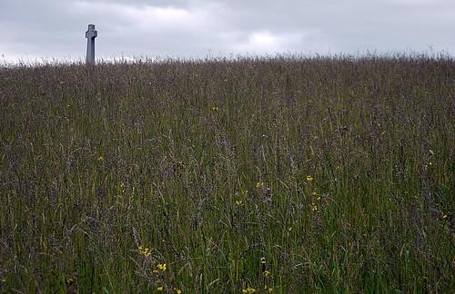 Memorial & Field