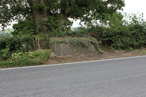 Stondin Laeth, Llanddwy, Trawsgoed