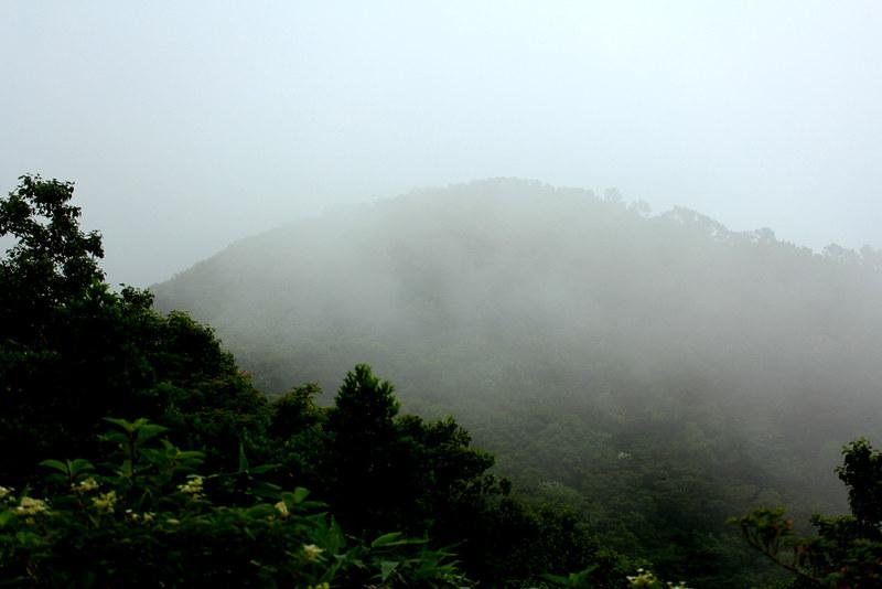 荒島岳_39