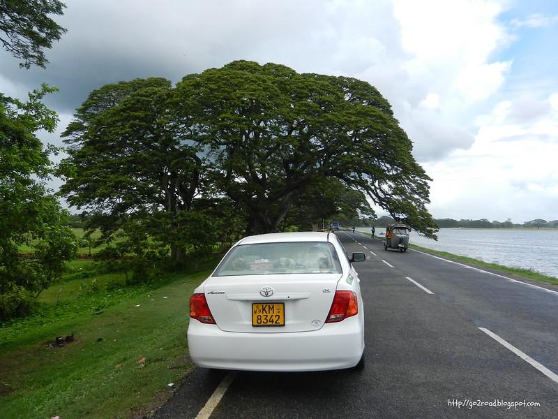 Тиссамахарама, вот такое живописное озеро. Шри Ланка