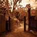 FairField Park_Mel 02