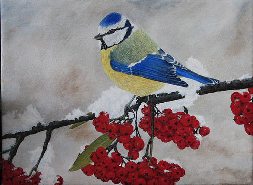 Blue Tit by Sid's art