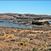 Bodega Bay and Harbor plus Doran Park and campground by dwight g