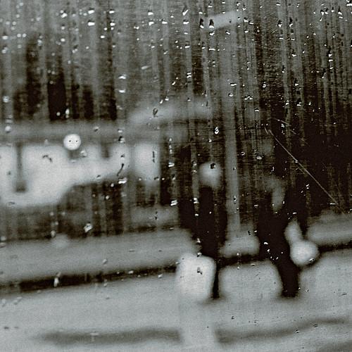 Friends of rain