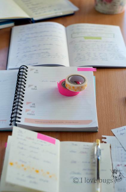 5 IDEAS para ORGANIZAR tu HORARIO
