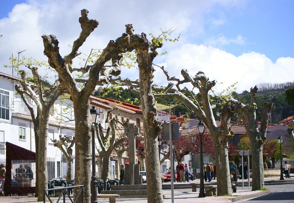 Extremadura_Valle del Jerte_ EL Piornal (4)