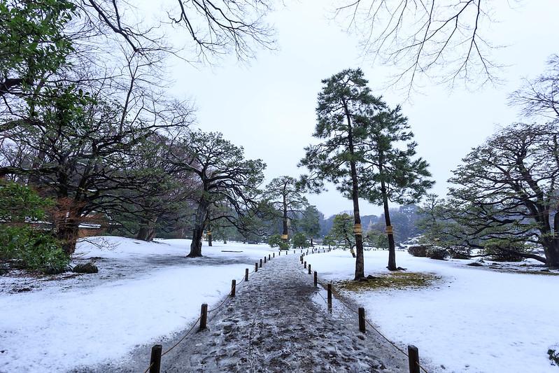 六義園 雪