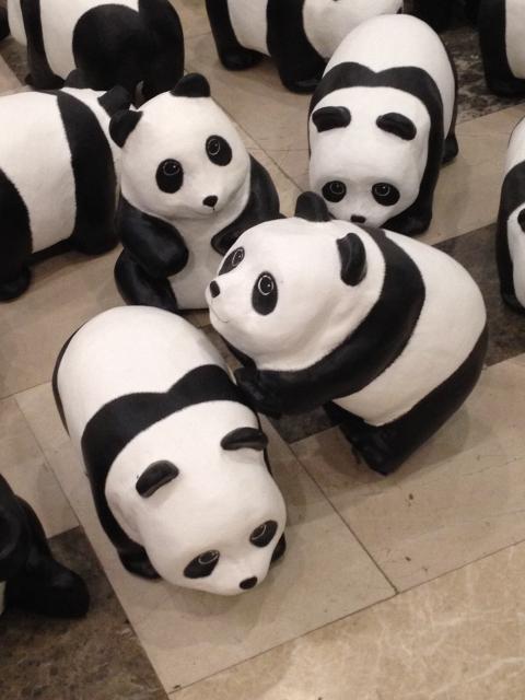 1600-pandas-2
