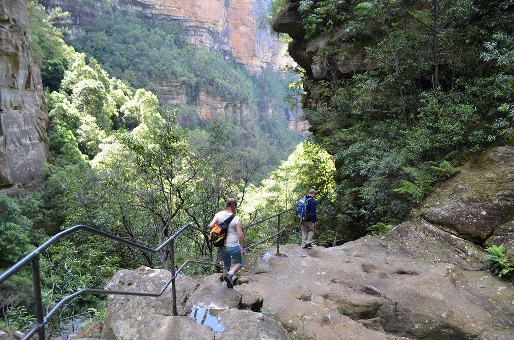 Valley of the Waters - Blue Mountains