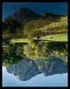Table Mountain from Kirstenbosch National Botanical Garden