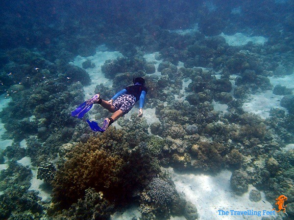 free diving at Terra Manna