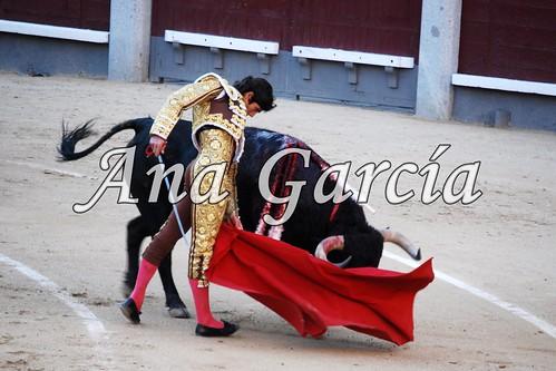 Castella 5