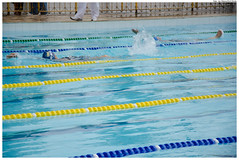 freestyle swimming(0.0), breaststroke(0.0), swimming pool(1.0), individual sports(1.0), swimming(1.0), sports(1.0), recreation(1.0), outdoor recreation(1.0), leisure(1.0), azure(1.0), swimmer(1.0), water sport(1.0), medley swimming(1.0),