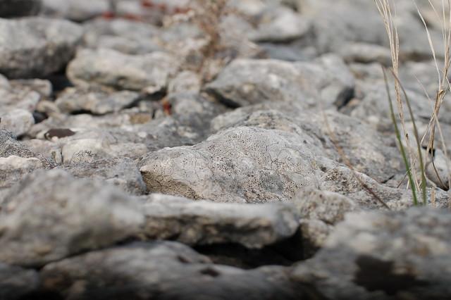 More stones
