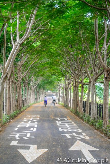 Bike Path Taiwan