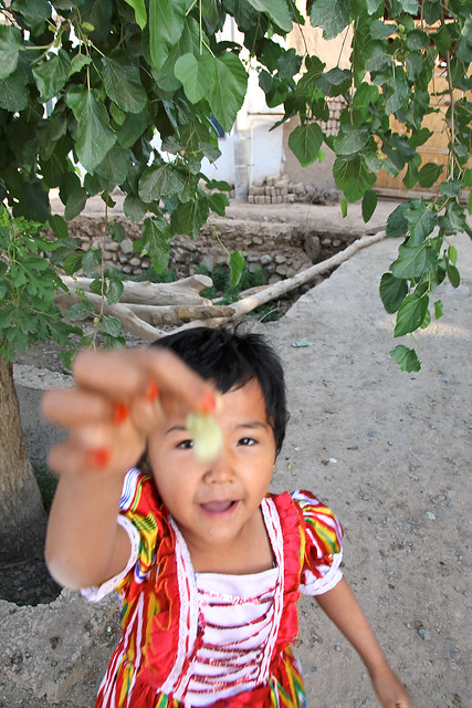 Picking a mulberry fruit, Shanshan (Piqan) County ルクチュン、桑の実を持つ少女