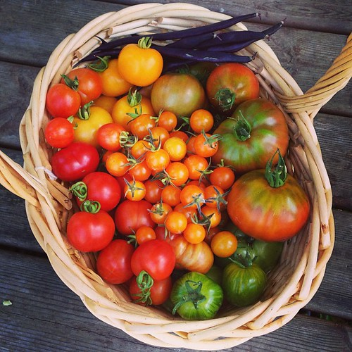Tomatoes & beans from my garden