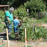 Connor showing off his garden to nana Judi