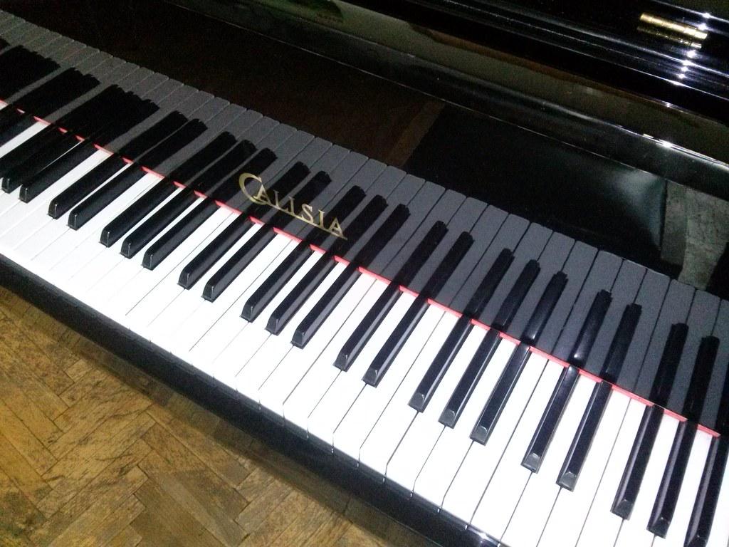 LG L7 II (P710) - sample #2
