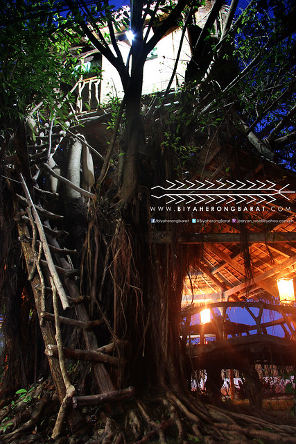 Tree house Gigantes Hideaway Tourist Inn Carles Iloilo Philippines