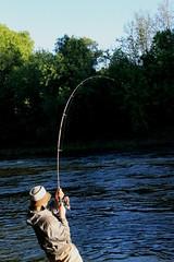 fishing, recreation, casting fishing, outdoor recreation, recreational fishing, fly fishing,
