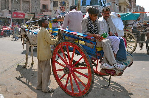 India - Rajasthan - Jodhpur - Horse Carriage - 01