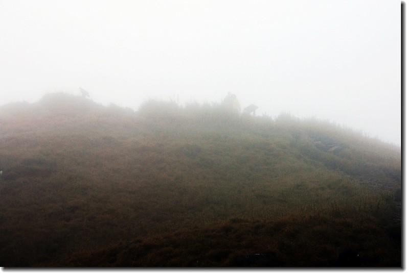披上一層薄紗的雪山東峰