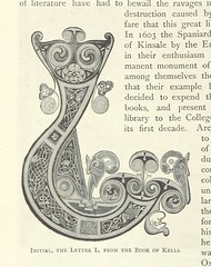 """British Library digitised image from page 30 of """"Irish Pictures drawn with pen and pencil, etc"""""""