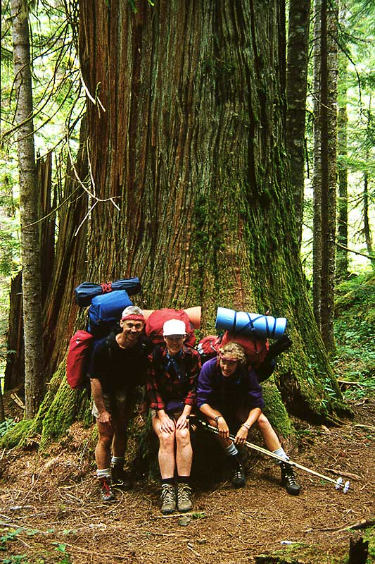Backpackers on a multi-day hiking trip on Vancouver Island, British Columbia, Canada