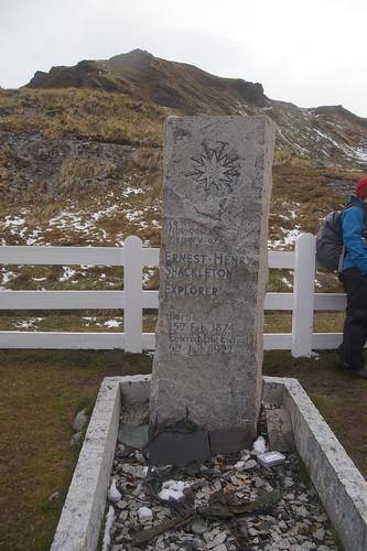 411 Graf Shackleton