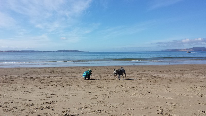 Eskil and Lottie at Kingston Dog Beach