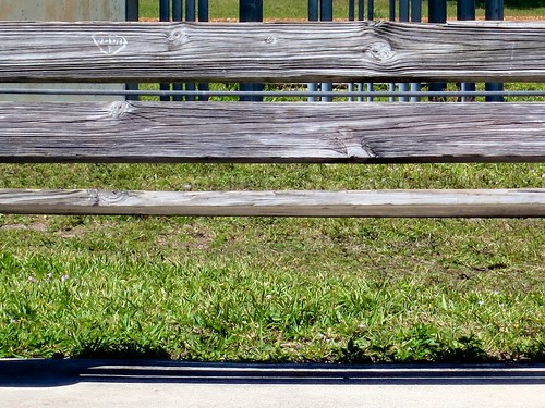 wood green texture grass lines bench outside pattern heart florida perspective sunny parkbench woodgrain okeeheeleepark carvedsign 52260mm ilobsterit